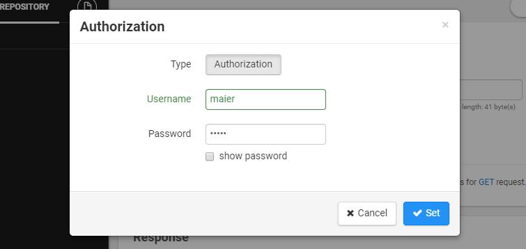 REST-API-Zugangsdaten eingeben